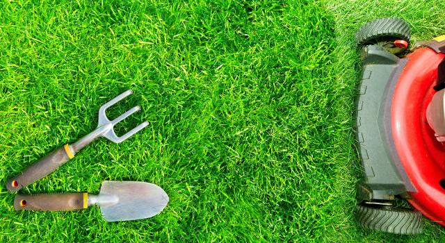 I tre migliori prodotti per giardino per la tua estate fai da te