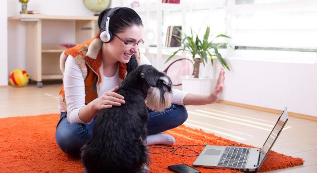 Le migliori app per videochiamare: tiene Skype, salgono Teams e Zoom