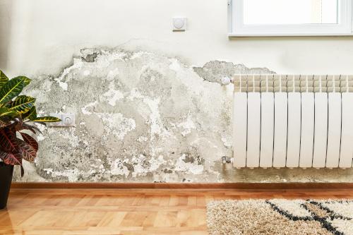 deumidificatori portatili contro l'umidità in casa